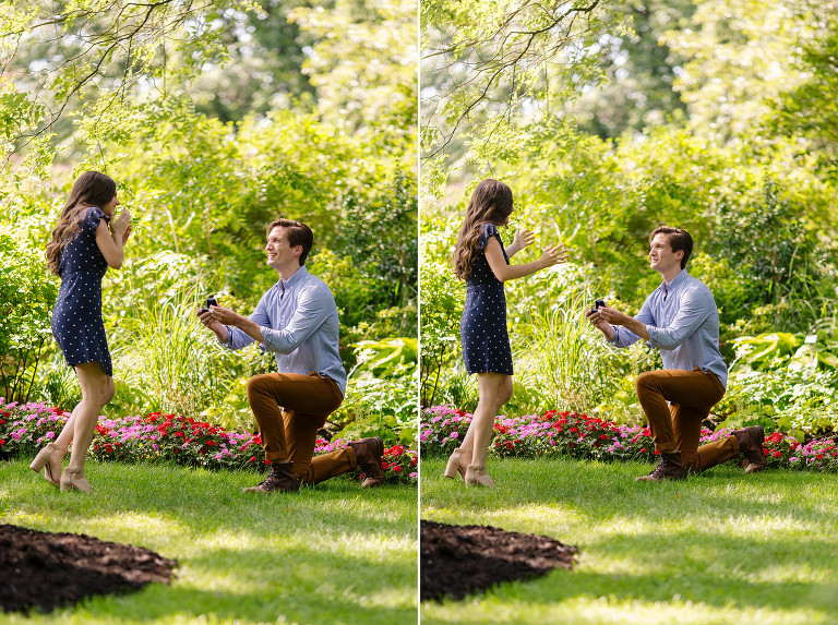 proposal-photography